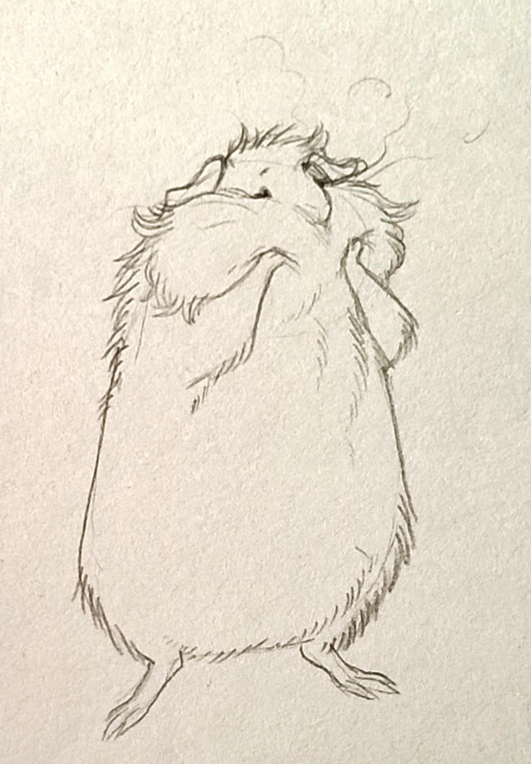 squishy guinea pig
